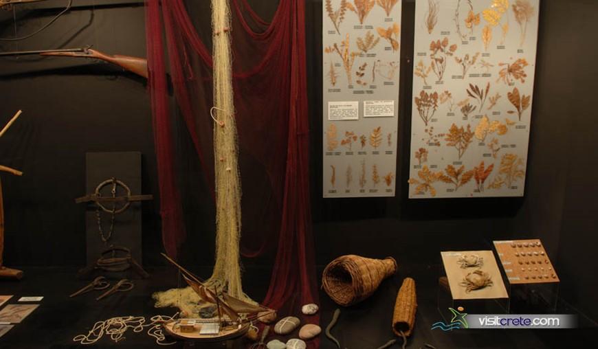 Museum Of Cretan Ethnology (Voroi)